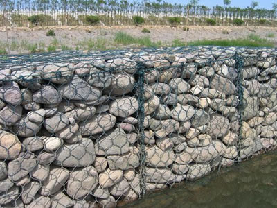 Green gabion boxes are installed on the river bank.