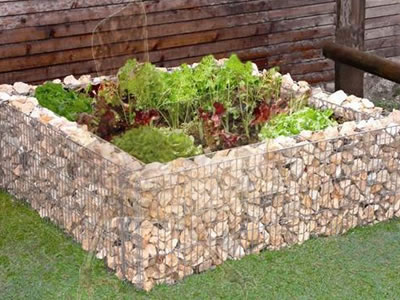 A square gabion planter on the grassland with some vegetables in it.