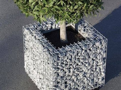 A square shape gabion planter on the ground with a tree in it.