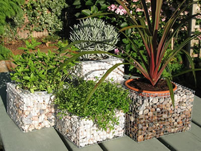 Four welded gabion planters on the ground with green plants in them.