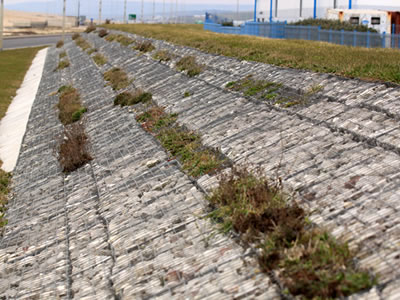 Welded gabions are installed on the slope with several green plants growing on them.